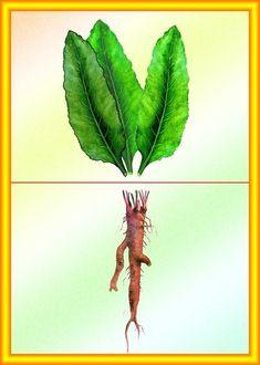 """Болтушка"" Логопед Preschool Art Activities, Autumn Activities, Fruit And Veg, Fruits And Vegetables, Printable Animals, Montessori Materials, Group Meals, Science And Nature, Plant Hanger"