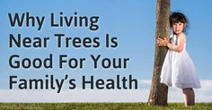 Why Living Near Trees Is Good for Your Health