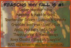 Totus Tuus Family & Catholic Homeschool: Reasons Why Fall is #1