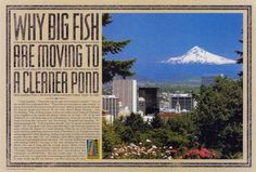 Read more: https://www.luerzersarchive.com/en/magazine/print-detail/11865.html Tags: Cole & Weber United, Seattle,Joe Shands,Mark Waggoner,Portland, Oregon