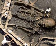 Gigantes y titanes, esqueletos del pasado. – El pensante