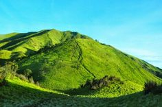 Merbabu mountain, Central Java, Indonesia