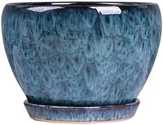 Amazon.com: Siunwdiy European Blue Flower Pot Succulent Indoor House Plant Ceramic Extra Personality Green Plant Basin with Drainage Hole Bonsai Pots Glazed Flower Container with Ceramic,Blue,Small: Home & Kitchen Succulent Pots, Succulents, Blue Vases, Container Flowers, Green Plants, Bonsai, Blue Flowers, Basin, House Plants