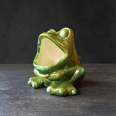 Green Frog Sponge Holder - Kitchen Scrubby Storage - Ceramic Succulent Planter Air Plant Pot - Olive Green & Blue - Vintage