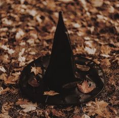I think Im going to read another book about witches today. Witches are actually one of my favorite topics in books and movies Autumn Aesthetic, Witch Aesthetic, Aesthetic Collage, 31 Days Of Halloween, Halloween Themes, Fall Halloween, Theme Divider, Autumn Witch, Makeup Humor