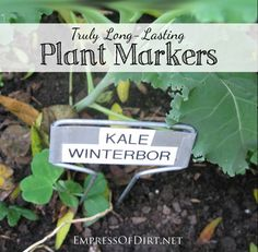 Plant Markers that last outdoors year round without fading or falling apart Garden Labels, Plant Labels, Plant Markers, Garden Markers, Backyard Projects, Outdoor Projects, Organic Gardening, Gardening Tips, Kitchen Gardening