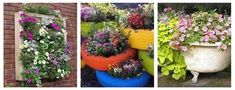 20 Creative Container Garden Ideas for adding plants, flowers, or vegetables to your yard. Learn ways to grow more in small spaces, grow food, help the environment, and create privacy, all with container gardens.
