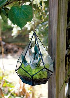 Teardrop Hanging Glass Terrarium-Perfect DIY gift or DIY home décor!