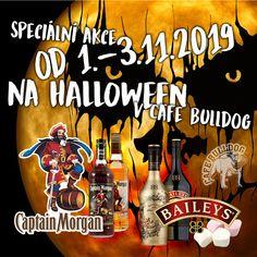 Hallowen s Morganem a Baileys v Cafe Bulldog Captain Morgan, Baileys, Halloween, Whisky, Canning, Whiskey, Home Canning, Spooky Halloween, Conservation