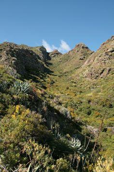 Parque Rural de #Anaga. #Tenerife, #IslasCanarias