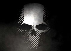 Ghost Recon: Wildlands skull