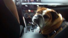 Driving! !!