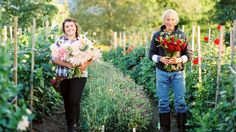 The flower farm Reggie Tarr and his daughter, Vanessa Tarr, operate in Sugar Hill, N.H., started out as a hobby.