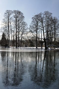Cold Winter Lake at the Spring Grove Cemetery. http://www.thefuneralsource.org/cemohhamco-001.html