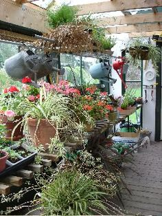 garden shed hall of fame: Wyndyacre