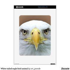 White tailed eagle bird animal skins for the iPad