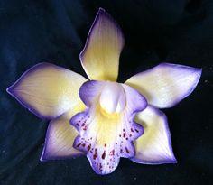orchids - Buscar con Google