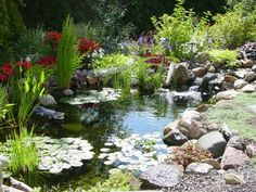 Love the natural look of this pond for koi.