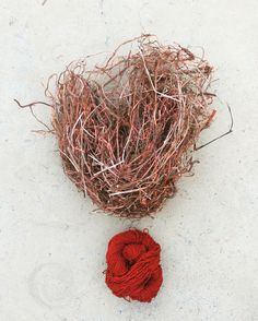 Wool dyed with Madder roots. #RubiaCordifolia #EthelMairet #DitchlingMuseumOfArtsAndCrafts #AVANI