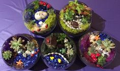 Party'n With Plants - Sell Tickets Online, Plant Party, Discount Tickets