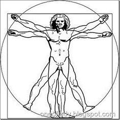 Витрувианский человек Леонардо да Винчи. Все растущее и стремящееся занять свое место в пространстве, наделено пропорциями золотого сечения.