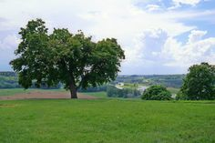 Beautiful Kernavė, Lithuania www.pramoguskonis.lt