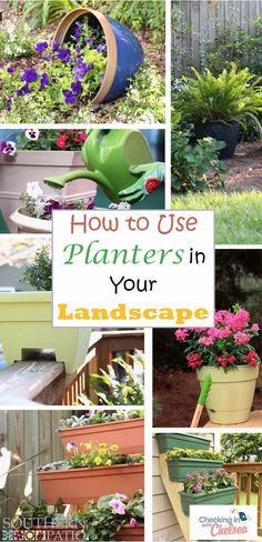 With the endless variety of decorative planters in the gardening world, the number of ways to display them is just as great. Here are some ideas for using planters in your landscape, from and Southern Patio. Railing Planters, Concrete Planters, Diy Planters, Planter Boxes, Pallet Planters, Small Space Gardening, Garden Spaces, Balcony Gardening, Gardening Hacks