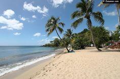 Photos Anse Figuier Martinique