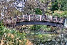 A small bridge to help cross the creek that goes through the UC Davis Arboretum.