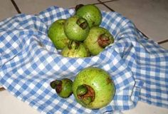 Cas ~ small, green fruit is known as Costa Rican guava or sour guava. A staple on Costa Rican tables, ripe cas is almost exclusively used for drinks, since its tart flavor, like a mix between lemon juice and white grapefruit, is usually too strong to eat plain. Cas is available year-round, but is most common from December-February and again from June-August. #Costa_Rica #Fruit #Cas