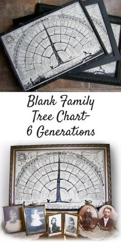 Family Tree Charts with blanks you fill in personal family history, genealogy information organized for home decor or gift Beautiful design, perfect for a Christmas gift! by elvia Genealogy Forms, Genealogy Chart, Genealogy Research, Family Genealogy, Blank Family Tree, Family Tree Chart, Finding Your Roots, My Family History, Family Roots