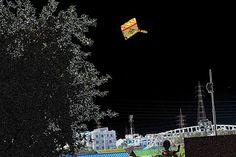 https://flic.kr/p/CV99Yz | বন্দী আকাশ !! বন্দী ঘূড়ি !! বন্দী সাকরাইন  !! অবাধ নগরায়ন ............... bonded sky !! captive kite !! freedom of urbanization and so called civilization ....   Copyright :Abdul Malek Babul FBPS . Cell:( +880) 01715298747  &  01837805350          E mail