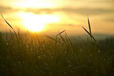 5 estratégias para tornar sua manhã mais produtiva: http://blog.crmzen.com.br/post/105864177311/5-estrategias-para-tornar-sua-manha-mais-produtiva