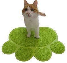 Cat Litter Mat ~ Litter Trapping ~ Oversized Paw Shaped ~ Easy Clean ~ FUN Bright Color ~ Ultimate Grip ~ Posh Perfect Size ~ All Cats ~ Best Litter Mat ~ 100% Money Back Guarantee Two Meows http://www.amazon.com/dp/B00NGSPSO6/ref=cm_sw_r_pi_dp_OTCsub0XYDSBR