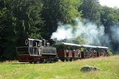 Imagini pentru mocanita agnita sibiu Locomotive, Train, Vehicles, Cars, Vehicle