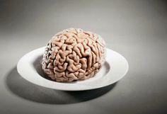 ¿Qué tiene de especial el cerebro humano?