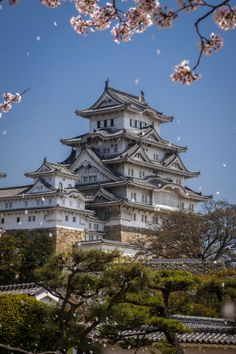 Himeji Castle during cherry blossom season, Kyoto, Japan … Japanese Castle, Japanese Temple, Japanese Palace, Japanese Culture, Japanese Art, Japanese Blossom, Asia Travel, Japan Travel, Kyoto Japan
