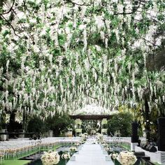 A Wisteria Wedding