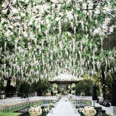 A Wisteria Wedding