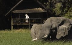 Orient Express Safaris, Maun, Botswana