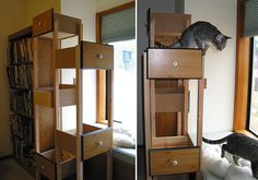 Need a craft project & want to spoil your kitty? Build Your Own Custom Cat Tree Using Re-purposed Dresser Drawers