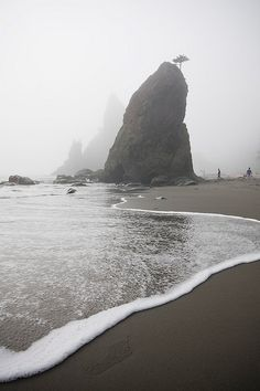 rialto beach | olympic national park | WA