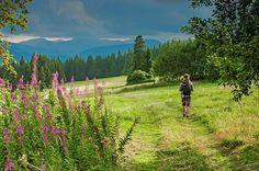 Deutschlands schönste Wanderwege – Tourentipps Übersichtskarte, Traumpfade, Traumschleifen, Traufgänge und Checklisten.