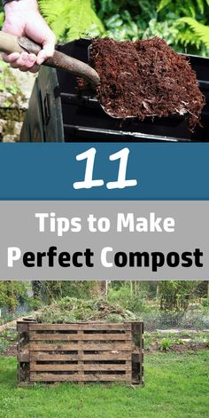 Composting is certainly by far the main way to naturally enrich your soil and every gardener must do it. So here are 11 best composting tips that will make composting easier.