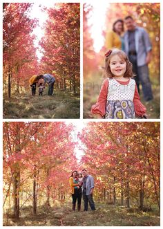 Why I love the month of October – Madison Family Photographer 2012-10-01_024
