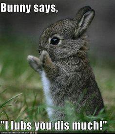I lub him too!