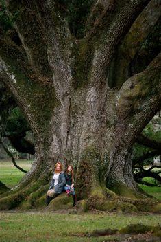 Me and my daughter - HUGE Oak Tree!