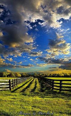 Country, field, wooden plank fence, cloud spattered sky, bright green grass, bright blue sky.