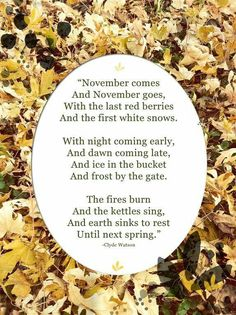 A beautiful November poem by Clyde Watson. Seasons Of The Year, Months In A Year, Autumn Day, Autumn Leaves, November Quotes, November Poem, All Nature, Red Berries, Strong Women