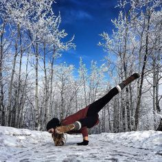 How cool is this? #slowtravel #yoga #outdooryoga #yogainspiration #reconnect #lovenature by @blissbandits & @pocketdwarf